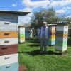 Весенние заботы пчеловодов