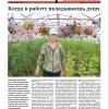 Выпуск газеты «Заря» № 82-84 от 21 июля 2017 года