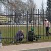 Все на субботник «Зеленая Весна»!