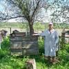 Почему пчеловоды живут долго