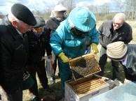 Придет время, когда пчеловодство станет государственным делом